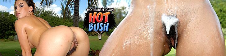 Hotbush